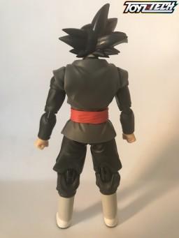 black goku00000006