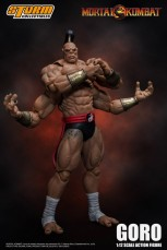 Goro Storm Collectibles3